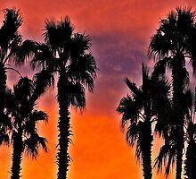 Palms At Sunset by tvlgoddess