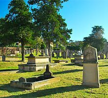 St. Johns Cemetery, 1790 by Penny Smith