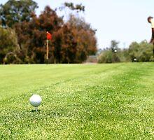 Golf by Henrik Lehnerer