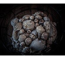 Ocean Jewels Photographic Print