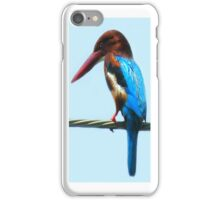 <º))))>< KINGFISHER IPHONE CASE <º))))><      iPhone Case/Skin