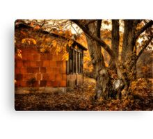 That Which Defines Us Canvas Print