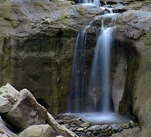 Cherry Creek Falls by Bill Hendricks
