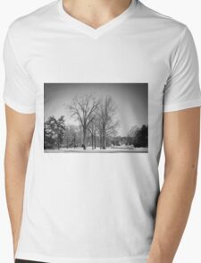 Winter Tree Mens V-Neck T-Shirt