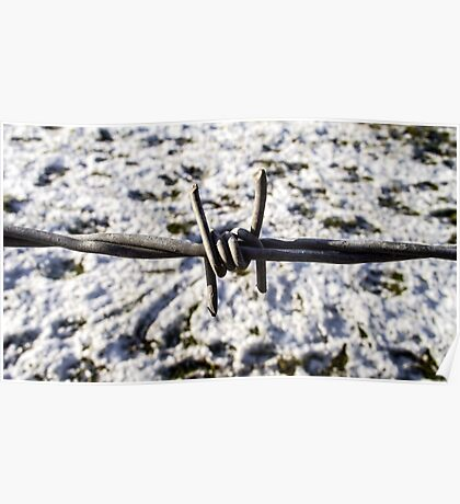Barbed wire in the snow Poster