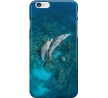 Sweet dolphin couple iPhone Case/Skin