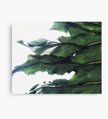 it's a green world Canvas Print