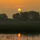 Golden Sunrise by William Fehr