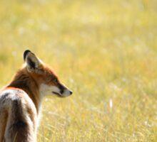 Fantastic Mr Fox Sticker