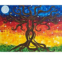Fertility Tree of Life Photographic Print