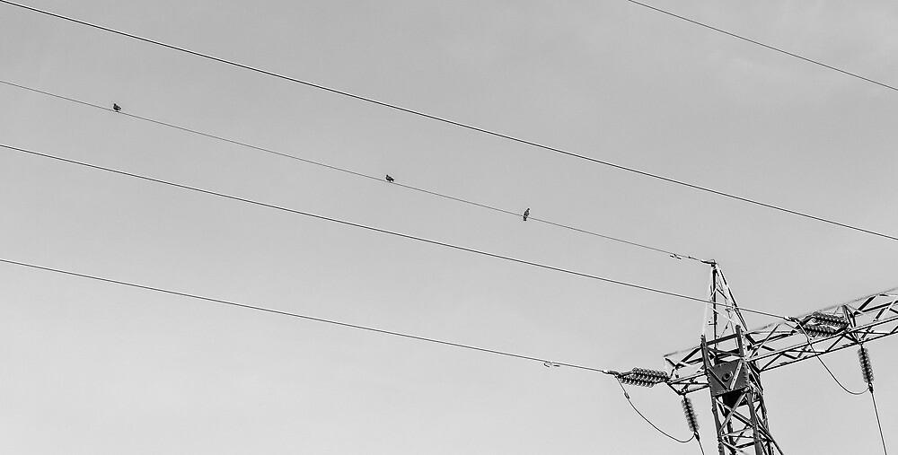 Tightrope Threesome by Matti Ollikainen