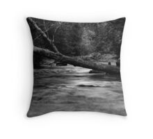 Lyre River No. 4, Olympic Peninsula, Washington, July 2013 Throw Pillow