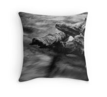 Lyre River No. 5, Olympic Peninsula, Washington, July 2013 Throw Pillow