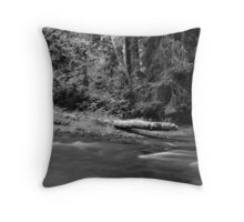 Lyre River No. 7, Olympic Peninsula, Washington, July 2013 Throw Pillow