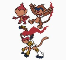 Chimchar, Monferno and Infernape Kids Clothes