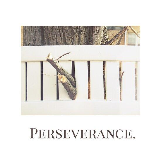 Perseverance by Eddie Irvin