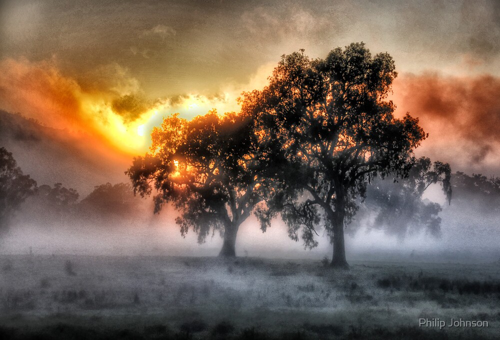 Morning Embers- Jingellic NSW - The HDR Experience by Philip Johnson