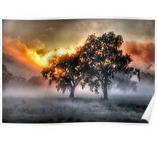 Morning Embers- Jingellic NSW - The HDR Experience Poster