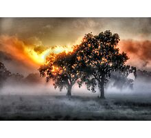 Morning Embers- Jingellic NSW - The HDR Experience Photographic Print