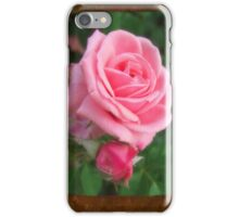 Pink Roses in Anzures 2 Blank P3F0 iPhone Case/Skin