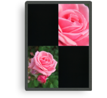 Pink Roses in Anzures 2 Blank Q2F0 Canvas Print
