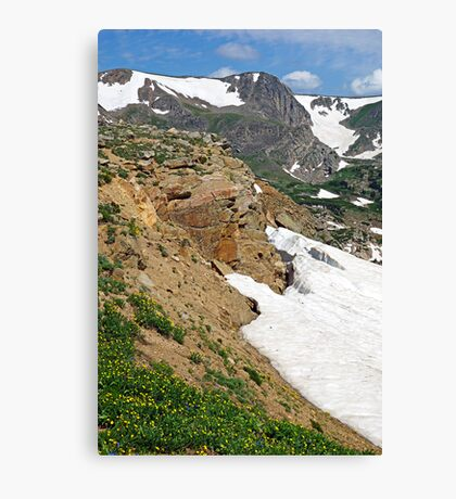 Rollins Pass I  Canvas Print