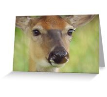 Gentle Beauty Greeting Card