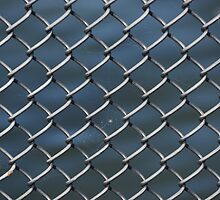 Chain Link Fence iPhone case by Scott Dovey