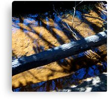Reflections in the Creek Canvas Print