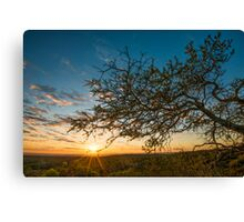 Early Rays Canvas Print