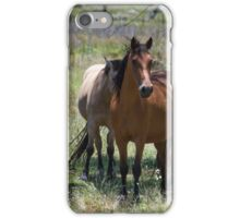Brumby Mares iPhone Case/Skin