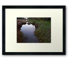293/365 watery ways Framed Print