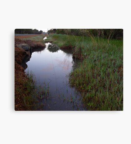 293/365 watery ways Canvas Print
