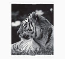 Siberian Tiger  One Piece - Short Sleeve