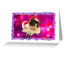 Santa Kitty Cards Greeting Card