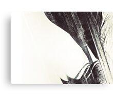 Icarus III: Falling Canvas Print