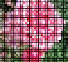 Pink Roses in Anzures 2 Mosaic by Christopher Johnson