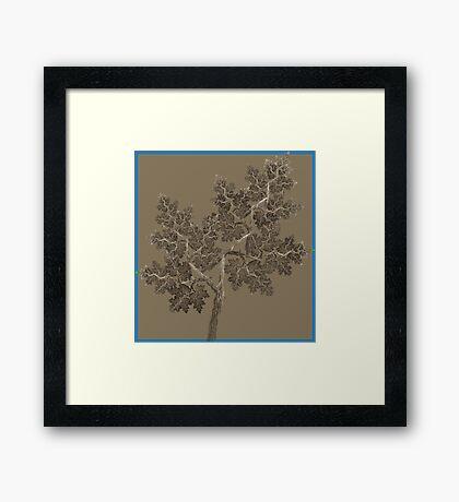 Woodcut Framed Print