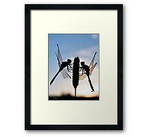 Mirrored Dragons Framed Print