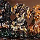 The Three Amigos  by Susan Bergstrom