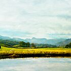 Elswater Fine Art  by Nicola  Pearson