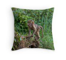 Baby baboon Throw Pillow
