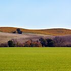 Sonoma Hills by agenda