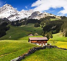 Swiss Chalet by vivsworld