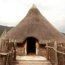Crannog - Scotland by Peter Cassidy
