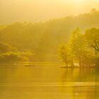 Rydal Summer Evening by John Dunbar
