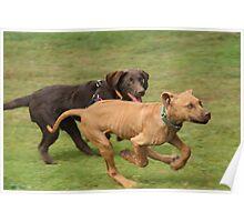 Puppies Running Poster