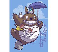 Totoro in Flight Photographic Print