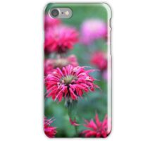Bee Balm iPhone Case/Skin