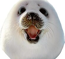 Seal by charlo19